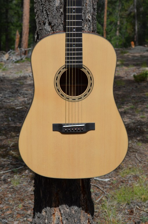 Rosewood 12 fret DN